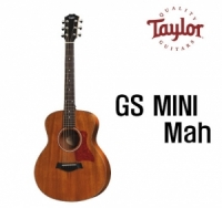 테일러 GS mini Mah