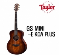 테일러 GS mini E koa plus