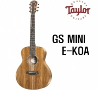 테일러 GS mini E koa